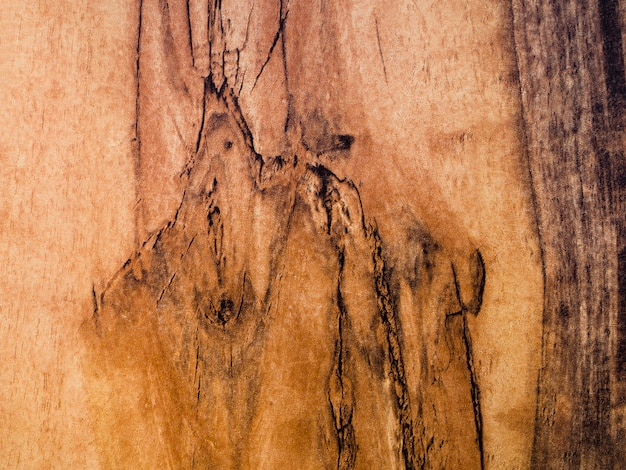 Texture de surface en bois gros plan