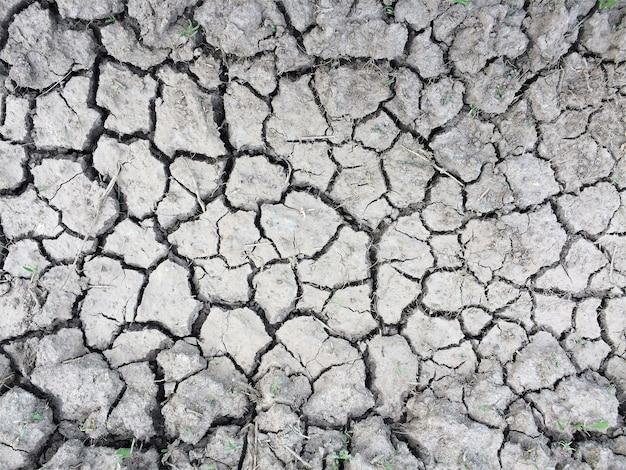 Texture de terre sèche fissurée fond monochrome desséché