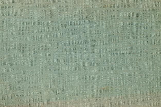 Texture de tissu très détaillée