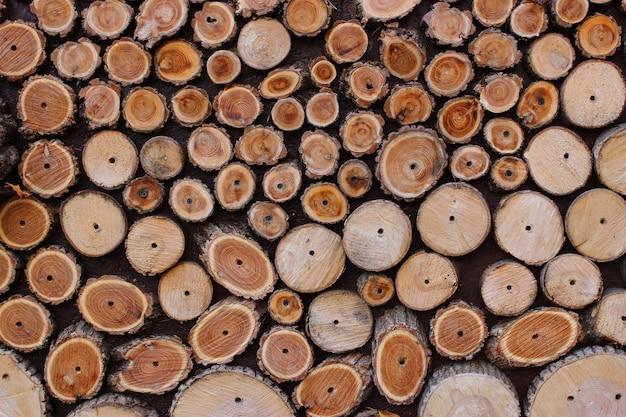La texture des tranches de bois gros plan