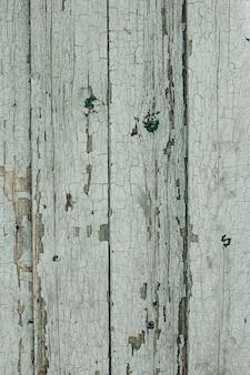 Texture d'un vieil arbre