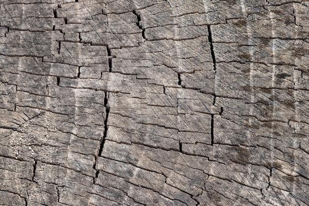 Texture de la vieille surface en bois fissurée, fond de bois