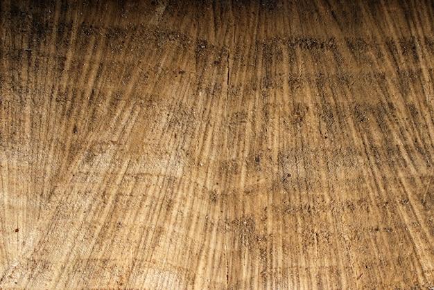 Texture de vieux moignon