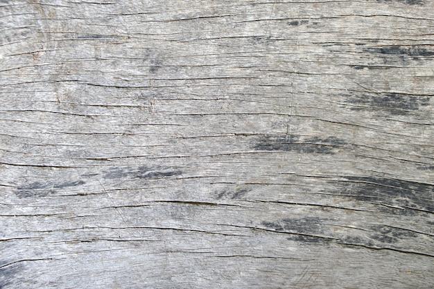 Textures et motifs bois