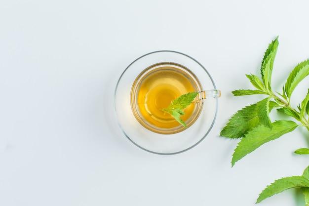 Thé aux herbes dans une tasse sur fond blanc, pose à plat.