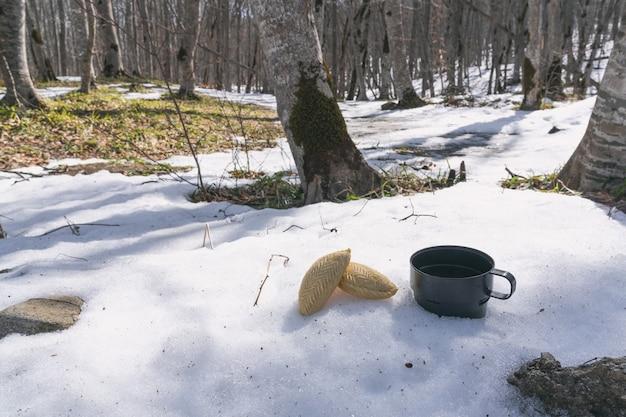 Thé buvant dans la nature, pique-nique