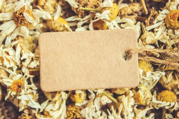 Thé à la camomille et étiquette. mise au point sélective. la nature.