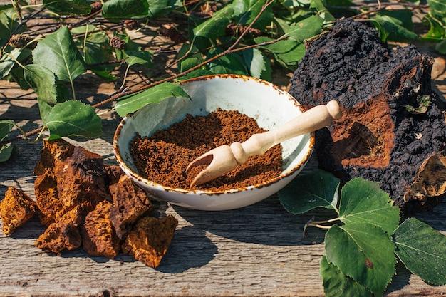 Le thé chaga, un puissant antioxydant, stimule le système immunitaire, la fabrication de champignons chaga sauvages, sains et naturels.