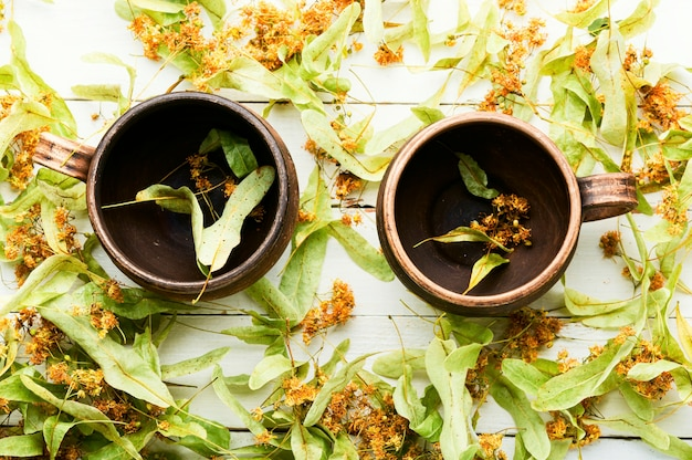 Thé de guérison des inflorescences de tilleul