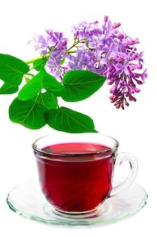 Thé d'hibiscus rouge et branche de lilas