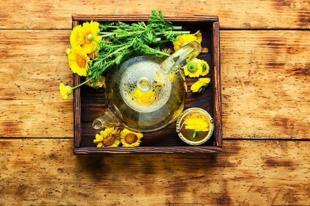 Théière en verre avec thé aux fleurs, vue de dessus
