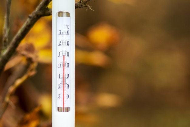 Le thermomètre sur les feuilles d'automne indique une température de plus 11 degrés
