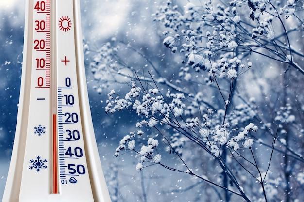 Le thermomètre sur fond de branches de plantes enneigées indique une température de moins 15 degrés