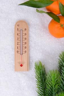 Thermomètre en gros plan de neige