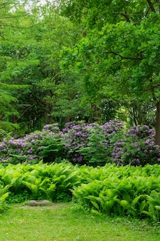 Le tiergarten, promenez-vous dans le magnifique parc verdoyant du centre de berlin, des pelouses vertes et de belles fleurs