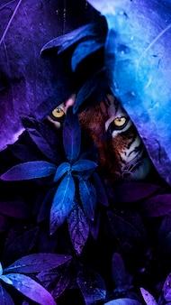 Tigre dans le fond d'écran de l'écran mobile de la jungle