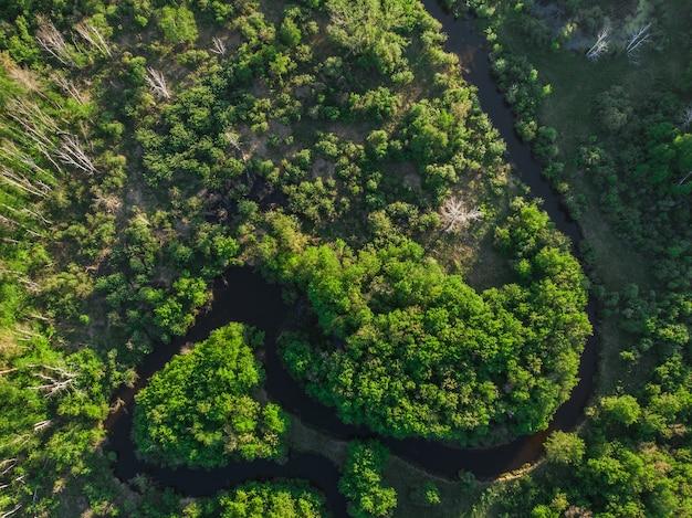 Tir aérien de drone du paysage de juin d'été avec la rivière