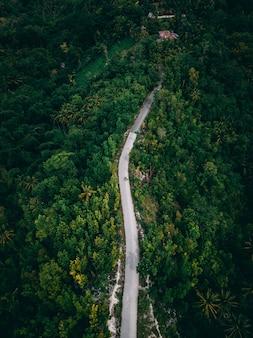 Tir aérien d'une longue route sur la colline entourée de verts et d'arbres