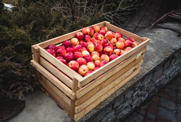 Tir extérieur d'une boîte en bois pleine de pommes rouges fraîches