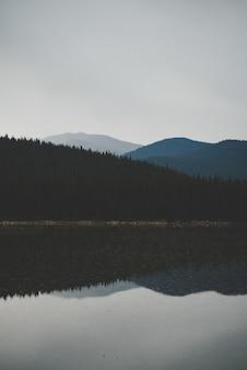 Tir vertical de l'eau reflétant la montagne boisée sous un ciel nuageux