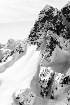 Tir vertical d'une montagne enneigée avec un ciel clair