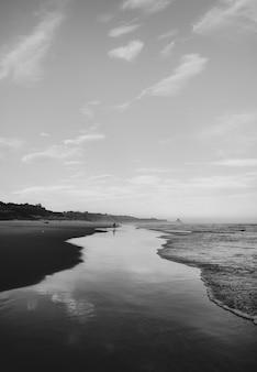 Tir vertical en niveaux de gris d'une vague et de la plage de dunedin, nouvelle-zélande