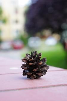 Tir vertical d'une pomme de pin sur une table en bois