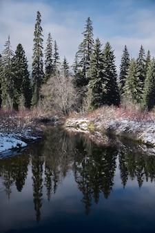 Tir vertical d'une rivière entourée de verdure sous un ciel bleu nuageux au canada