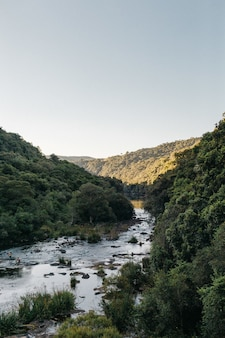 Tir vertical d'une rivière qui coule entourée de montagnes avec un ciel clair