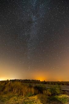 Tir vertical d'une route vide entourée de verdure sous un ciel étoilé