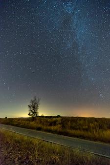 Tir vertical d'une route vide entre la verdure sous un ciel bleu étoilé