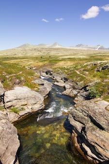 Tir vertical d'un ruisseau de montagne qui coule à travers les pierres