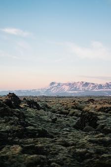 Tir vertical des textures de terre en islande avec une montagne couverte de neige en arrière-plan