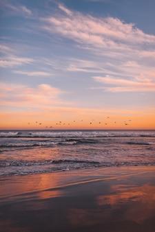 Tir vertical d'une volée d'oiseaux de mer survolant la mer au coucher du soleil