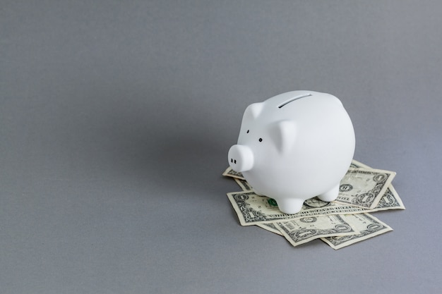 Tirelire blanche et dollars américains
