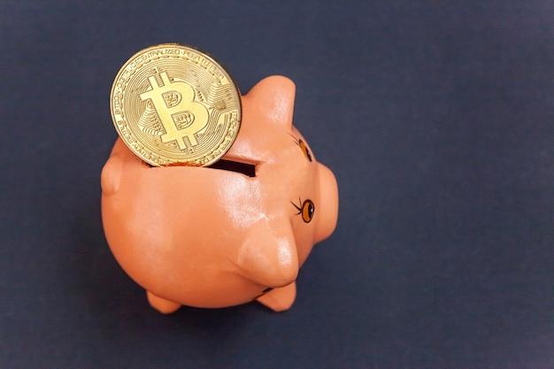 Tirelire et pièce d'or bitcoin argent virtuel sur fond noir