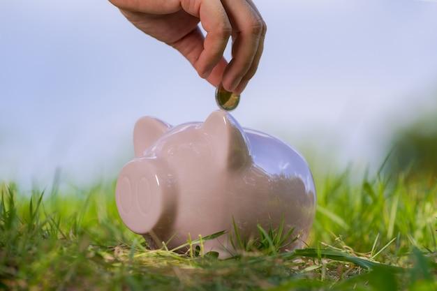 Tirelire rose sur l'herbe avec la main dans une pièce de monnaie