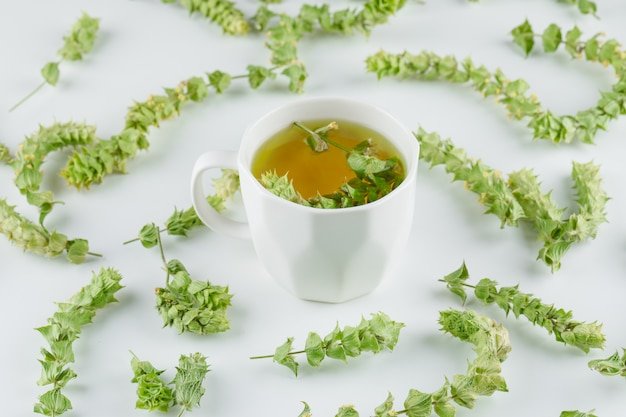 Tisane dans une tasse avec des feuilles vue grand angle sur un blanc