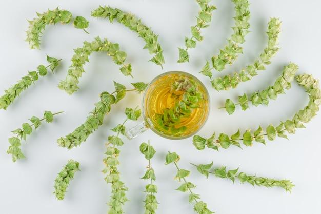 Tisane dans une tasse en verre avec des feuilles vue de dessus sur un blanc