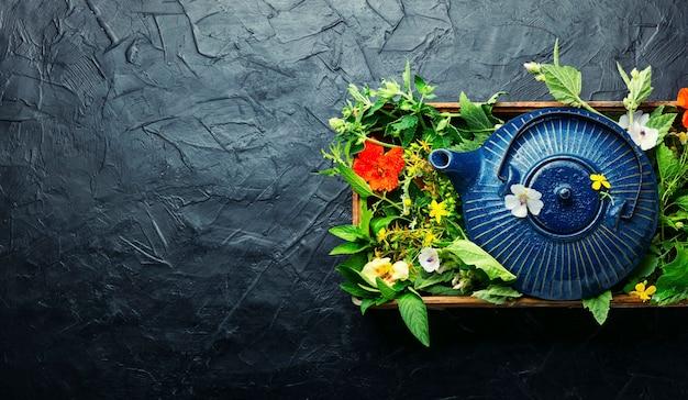 Tisane d'un ensemble d'herbes médicinales sauvages. phytothérapie et homéopathie. plante médicinale. espace de copie