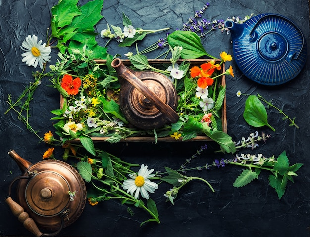 Tisane de guérison. théière avec du thé à base d'herbes sauvages fraîches. phytothérapie. thé aux herbes.