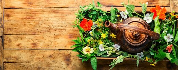 Tisane de guérison. théière avec du thé à base d'herbes sauvages fraîches. phytothérapie. tisane.copier l'espace