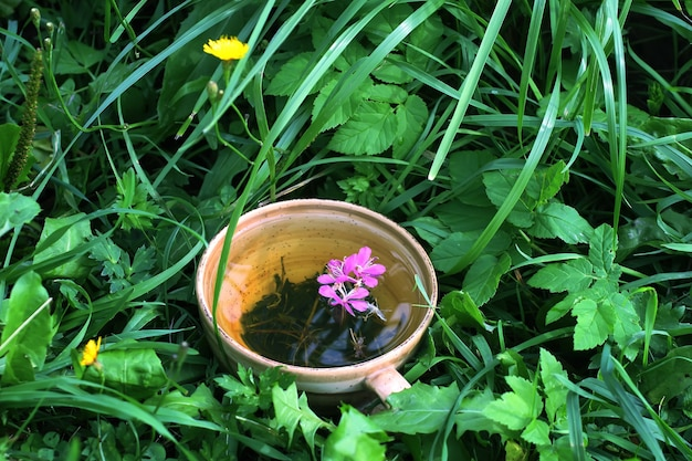 Tisane naturelle avec des fleurs et des feuilles violettes médicales d'épilobe dans une tasse en céramique sur l'herbe verte d'été.