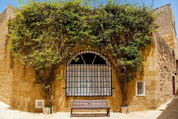 Tissage de plantes vertes sur la façade du bâtiment, mdina, malte