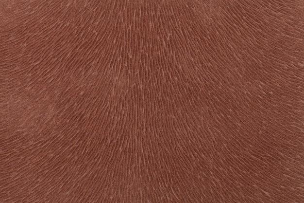 Tissu brun mat imitant la fourrure animale, fond en cuir, tissu texturé,