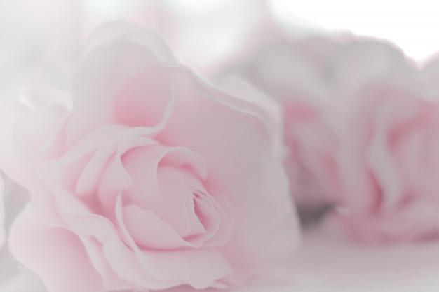 Tissu coloré avec des fleurs roses et un dégradé pour le fond et les cartes postales