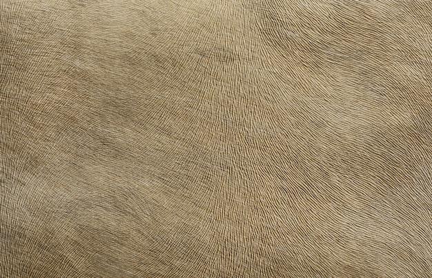 Tissus d'ameublement imitant le cuir