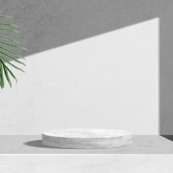 Toile de fond de produit botanique, feuilles de palmier