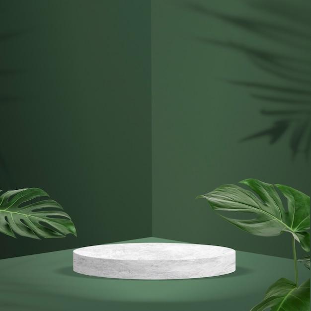 Toile de fond de produit botanique avec des feuilles tropicales
