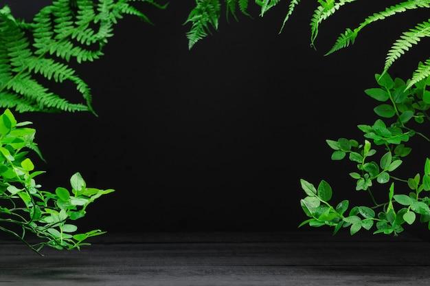 Toile de fond de produits cosmétiques publicitaires. bannière de produit. feuilles tropicales sur fond sombre. vitrine de marchandises sur fond naturel. style de maquette, place pour le texte. concept nature et écologie.